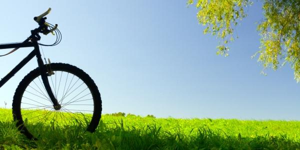 Algunos consejos ecológicos para nuestra vida cotidiana