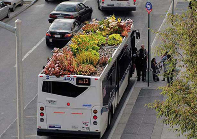Jardines en los techos de autobuses en Nueva York