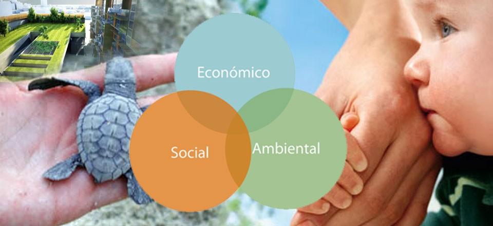 De qué hablamos cuando hablamos de sustentabilidad?