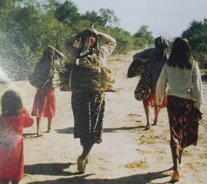 Mujeres wichis - recolección
