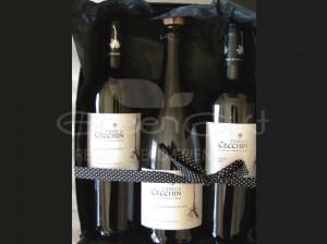 Dúo de vinos varietales y espumante orgánico