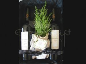 Dúo de vinos varietales orgánicos con pino lemon