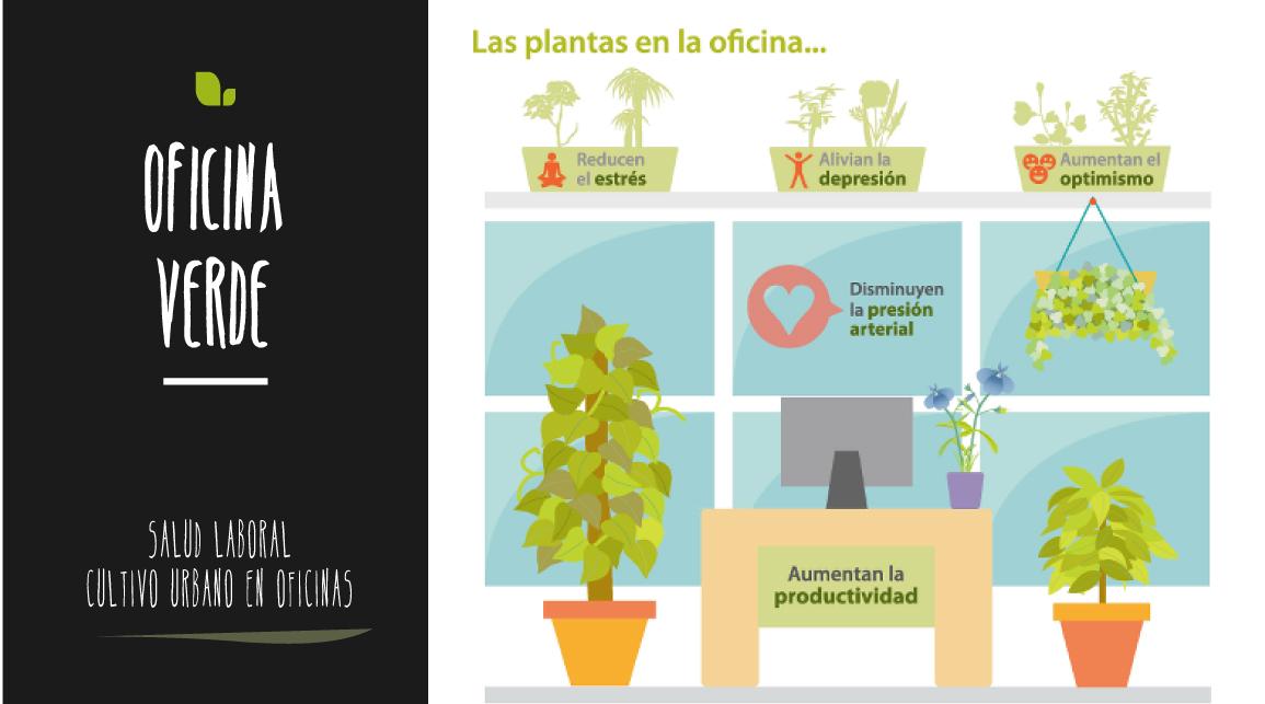 Beneficios de las plantas en oficinas