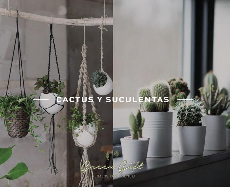 post-cactus1