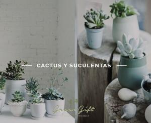 post-cactus2