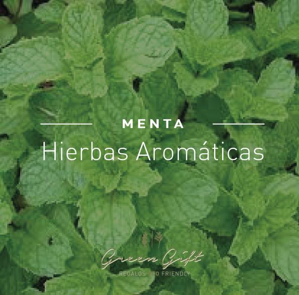 Hierbas-menta