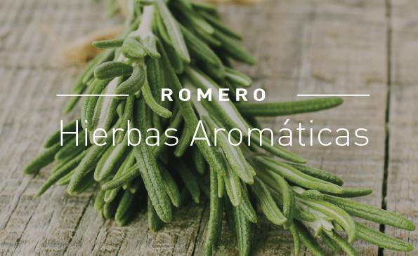 5 Plantas aromáticas que tenés que tener