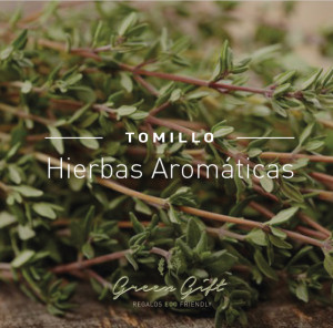 hierbas-tomillo