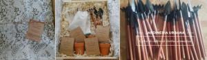 baner-cofres-de-cultivo