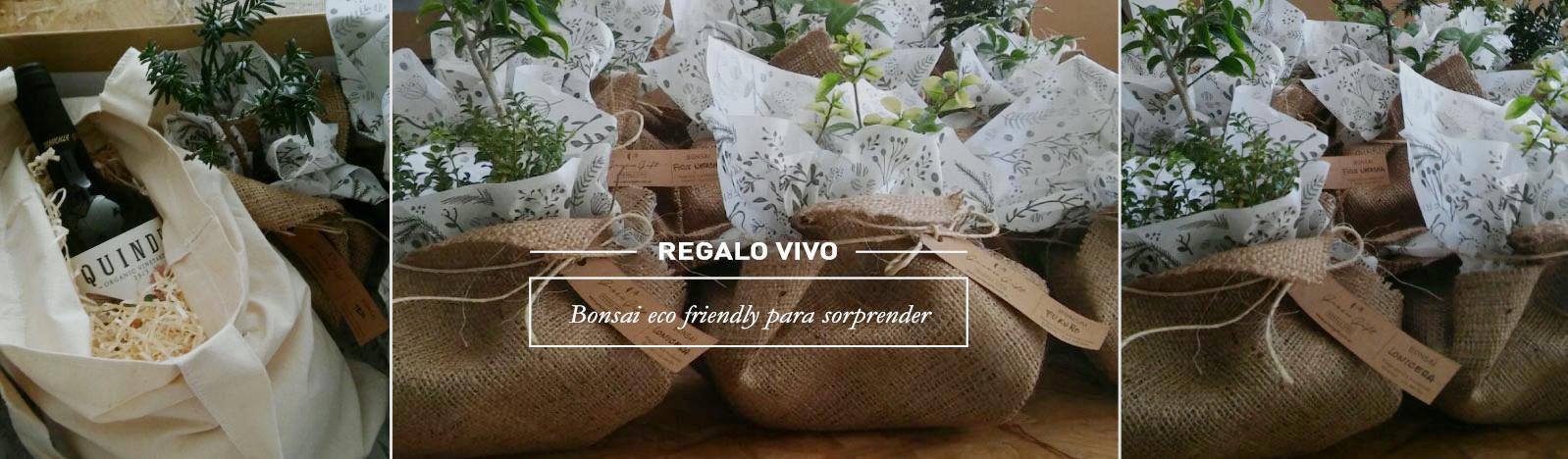 Green Gift   1º empresa de regalos sustentables de Argentina
